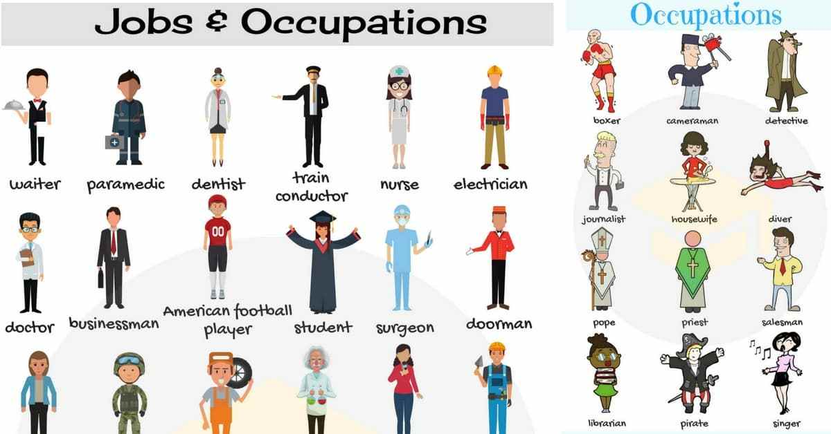 jobs-and-occupations.jpg